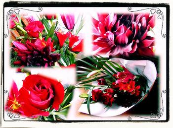 赤い花2.jpg