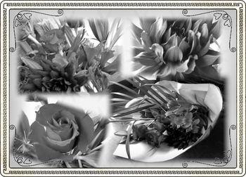 赤い花5.jpg